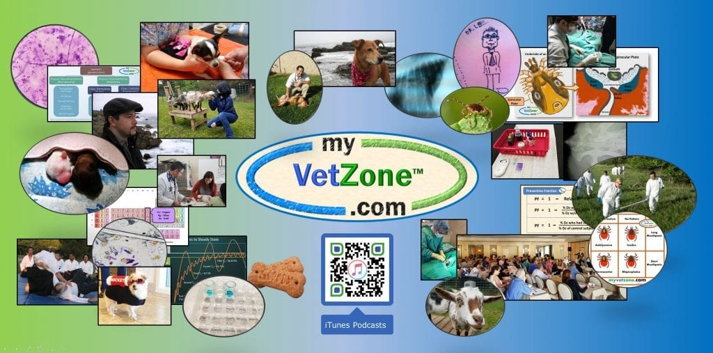 VetZone, vet, zone, dog, cat, veterinary, medicine, veterinarian, technician, tech, health, CE, continuing, education, preventive, diplomate, ACVPM, DACVPM, health, Christopher Lee, Christopher Lee DVM, Chris Lee vet, Chris Lee veterinarian, Chris Lee DVM, Christopher Lee veterinarian, Dr. Christopher Lee, Kayla Wells, Kayla Wells DVM, MPH, DVM,