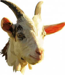 VetZone, vet, zone, dog, cat, veterinary, medicine, veterinarian, technician, tech, health, CE, continuing, education, preventive, diplomate, ACVPM, DACVPM, health, Christopher Lee, Christopher Lee DVM, Chris Lee vet, Chris Lee veterinarian, Chris Lee DVM, Christopher Lee veterinarian, Dr. Christopher Lee, Kayla Wells, Kayla Wells DVM, MPH, DVM, goat, goats, caprine, goat nutrition, ruminant,